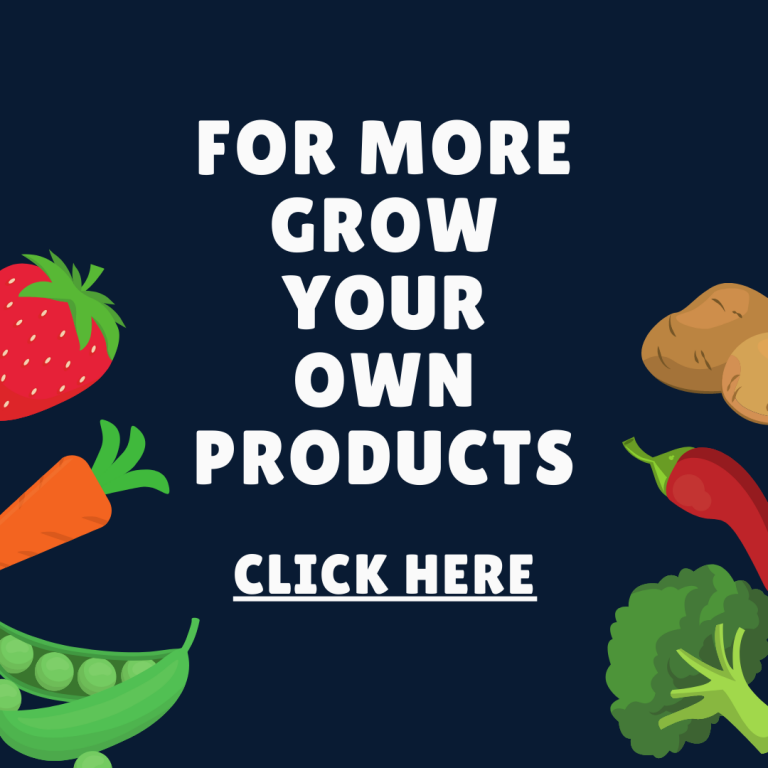 Grow Your Own Seeds Vegetables Fruit