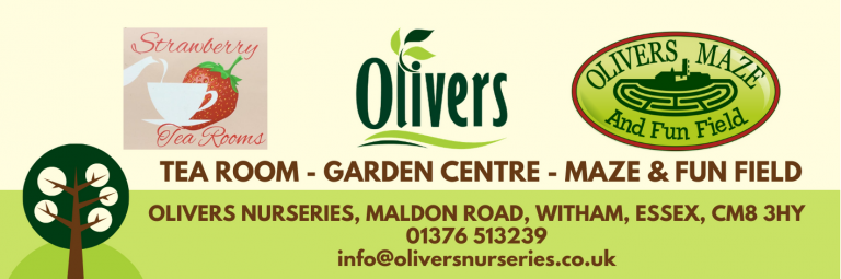 Garden Centre, Plants Centre, Houseplants, House Plants, Outdoor Furniture, Witham, Wickham Bishops, Totham, Tiptree, Waltham, Maldon, Hatfield Peverel, Braintree, Chelmsford